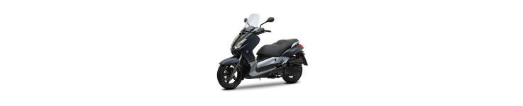 X Max 125 - 250