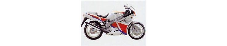 FZR 600