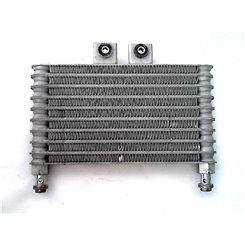 Radiador / Hyosung GTR 250