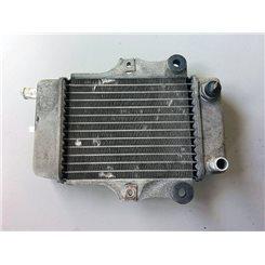Radiador / Honda Dylan 125
