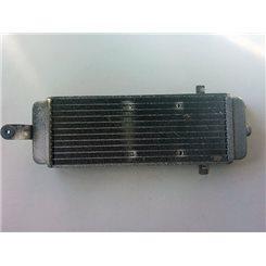 Radiador / Suzuki Burgman 125