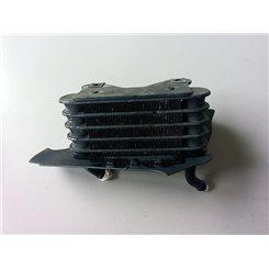 Radiador 2 / BMW R850 R '03