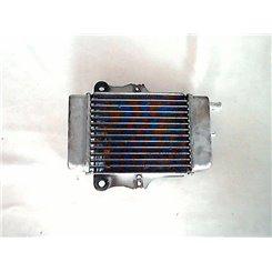 Radiador / Honda Dylan 150